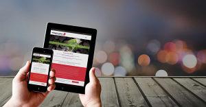 Usluge WEB Programiranja (izrada aplikacija i sajtova)