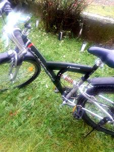 Biciklo za odrasle