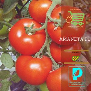 Sjeme paradajza Amaneta F1 500 s