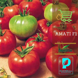 Sjeme paradajza Amati F1