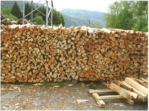 Drvo za ogrev Bukva bijela