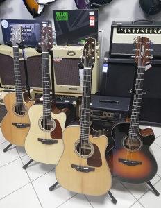 Takamine akustična ozvučena gitara