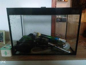 akvarijum sa ukrasima