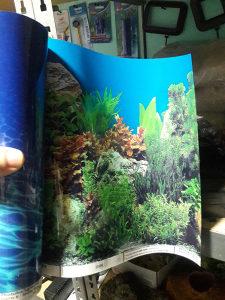 Pozadinski poster za akvarijume 30 i 40cm visine