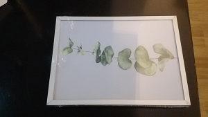 okvir za slike 13x18cm