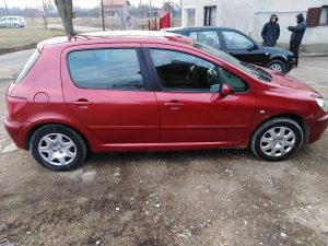 Peugeot 307 1,6 benzin