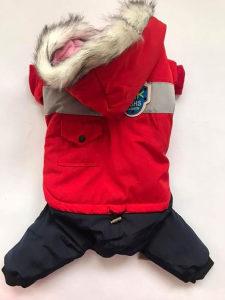 Odjeca za pse - Sfafander za psa