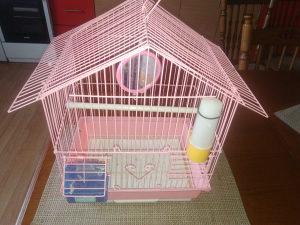 kavez ptice