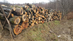 drva mjesavina