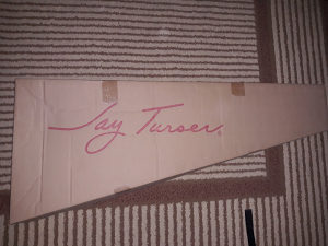 Elektricna gitara Jay Turser