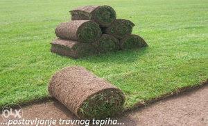 Travni busen-prirodna trava