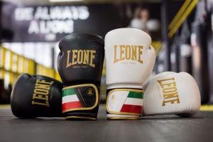 Rukavice za boks i kick boks
