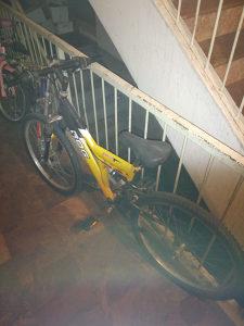 Bicikl Rog