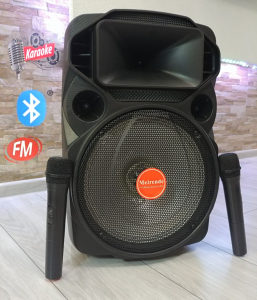 Bluetooth karaoke zvucnik LIGHT SHOW + 2 bežična mikrof