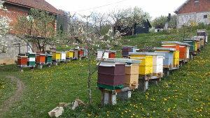 LR košnice sa pčelama, pčelinja društva