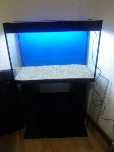 Akvarijum 72l + rasvijeta + pijesak
