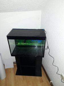 Akvarijum 70l + rasvijeta + pijesak