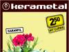 Karanfil  Catharanthus