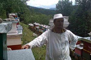 Rojevi na LR okvirima pčele