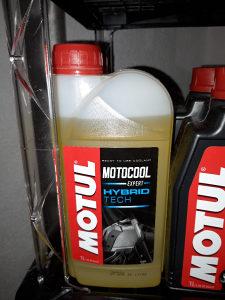 Motul Motocool Expert 1l