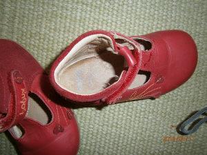 Bobux cipelice..Kožne...Broj 21 :-)