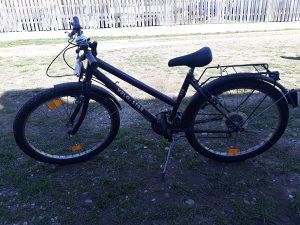 Biciklo pegasus