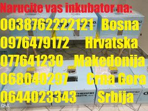 Poluautomatski inkubator 100 jaja Thermo Digital d.o.o.