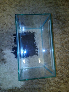 Akvarijum za ribice , 35x20x25 cm,EXTRA,23 km