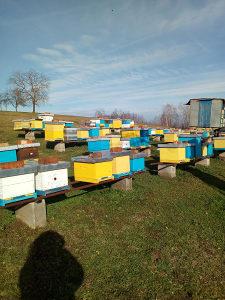 ROJEVI - PČELE - MED NA VELIKO
