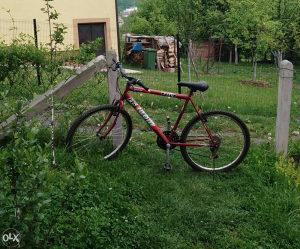 Biciklo Team