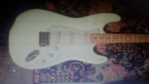 elektricna gitara rooster