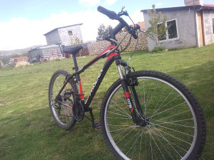 Biciklo Phoenix