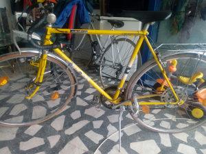 Biciklo Pantera