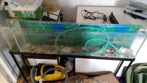 Akvarijum akvarijum