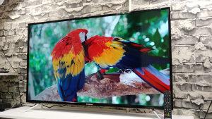 """Polaroid 55"""" / 4K / 3xHDMi 2xUSB / DVB-T/S2/C /"""