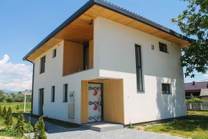 Atraktivna kuća / vila, Opština Ilidža - Osijek