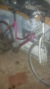 Biciklo zensko