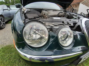 Far jaguar s type