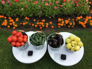 Certificirano organsko i halal povrće