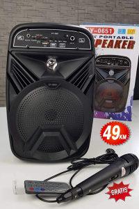 Zvucnik 30W mikrofon gratis