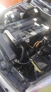 MOTOR BMV 525 TDS E39 1997 GOD