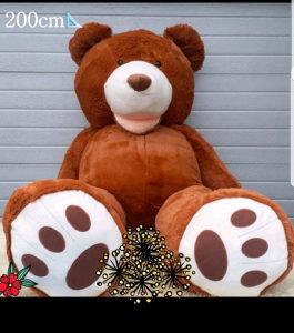 Veliki meki plisani medo/medvjed 100cm i 200cm