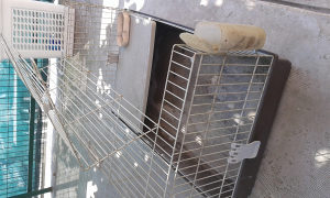 Kavez za zeca