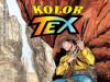 Tex Kolor 6 / STRIP AGENT