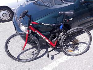 Biciklo CAPRIOLO COBRA 26