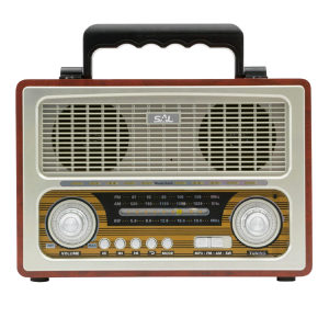 Zvučnik bežični SAL RRT 3B