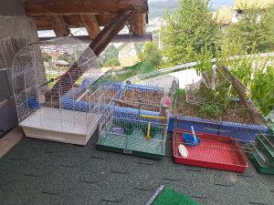 Kavezi za ptice i zeca