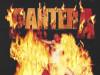 Pantera LP / Gramofonska ploča !