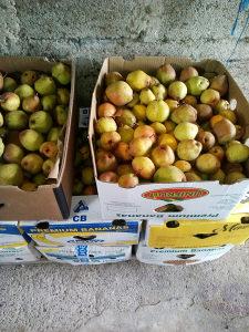 Kruška viljamovka-citronka