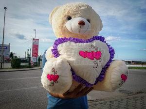 Plisani medo/medvjed sa srcem 60cm